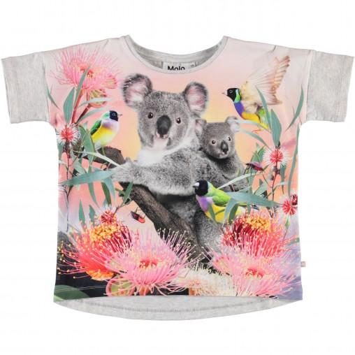 Camiseta Koala Molo